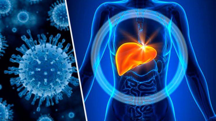 """""""Hepatitis: es hora de  diagnosticar, tratar y curar"""""""